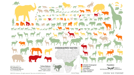 Animal Infographic Tableau
