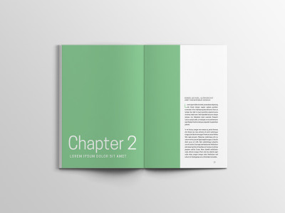 Chapter Page Report