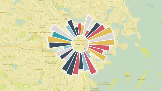 Strategy Consultancy Data Visualization Boston Image