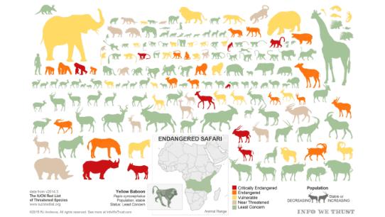 Animal Infographic Tableau