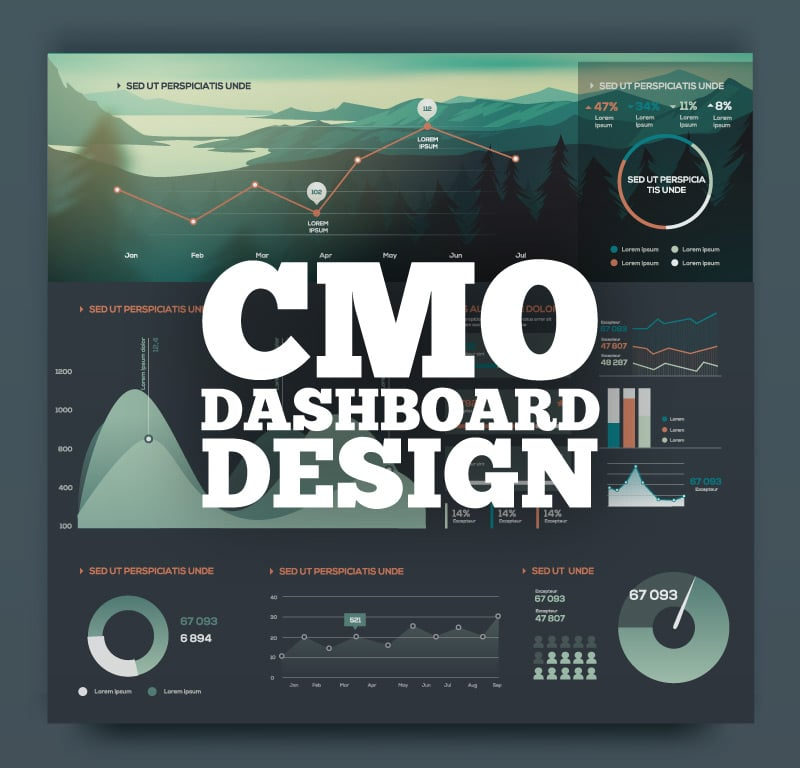 Visualizing Data for the Chief Marketing Officer (CMO) Presentation